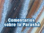 articulo-parasha